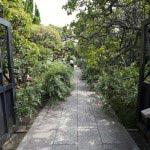 宝戒寺の萩(ハギ)。宝戒寺は門から萩に覆われます。
