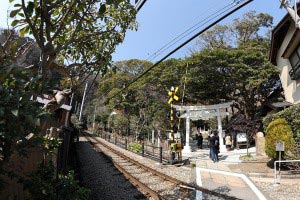 御霊神社(鎌倉権五郎神社)