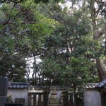 清雲寺本堂右手を入ると、三浦氏三代の墓が見えてきます。