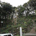 霊光寺の本堂は丘の上にあります。