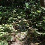 妙法寺の杜に佇む観音様。