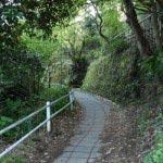 田楽辻子のみちをしばらくいき、この道に入ります。すぐに報国寺です。