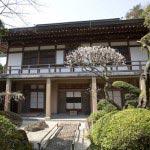 報国寺の梅。報国寺は竹の庭だけでなく本堂へと進む参道周辺の庭園も見事です。
