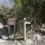十二所果樹園と朝比奈切通しの岐れ道。左が朝比奈切通し、右に行くと十二所果樹園です。