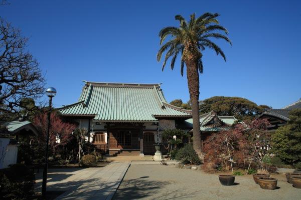 本瑞寺境内。小高い丘にあるため、背後は青い空。潮風香る穏やかな場所です。この地で催された源頼朝の観桜の宴はさぞ美しかったことでしょう。