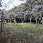 衣笠城址。緑に囲まれ、公園のようになっています。