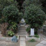 妙本寺、竹御所の墓。きれいな樹々に囲まれた竹御所の墓。