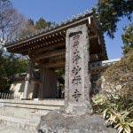 〈王道〉金沢街道をゆく。浄明寺。足利氏の菩提寺として知られ、室町時代には東国を治めた足利公方の屋敷があり、ここから日本の東半分を治めていました。