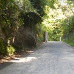 亀ヶ谷坂切通し。舗装されてしまったのは惜しいことですが、側面の崖などに往時の切通しの跡をみることが出来ます。