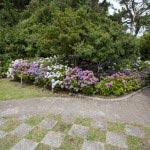 稲村ケ崎海浜公園、展望台にあるあじさい。