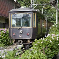 御霊神社のあじさいと江ノ電。平成14年にデビューした20形。10形レトロの流れを汲む車両です。