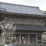 このルートのメイン、光明寺です。湘南地域を代表する大伽藍と桜を潮風とともに楽しんでください。