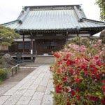 道を進むと、乱橋に続いて新田義貞ゆかりの史跡、義貞創建による九品寺があります。
