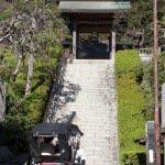 〈王道〉金沢街道をゆく。荏柄天神社には鶴岡八幡宮なきあと鎌倉一となった大銀杏があります。