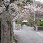 〈王道〉金沢街道をゆく。明王院。摂関家から招かれた第4代将軍藤原頼経によって創建されました。