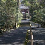 妙本寺の参道。とてもおすすめしたい雰囲気、なのですがあじさいはこの参道と並行して左側を通る道にあります。
