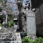 かつてこの地に安達盛長の屋敷がありました。現在は甘縄神明神社の境内にある石碑がそれを伝えています。
