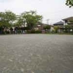 三浦大介腹切の松。ブランコや鉄棒が設置された公園に佇んでいます。