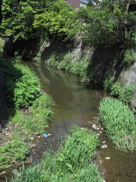 青砥藤綱邸跡。すぐ側にある青砥橋からみる滑川。