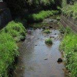 青砥藤綱邸跡。すぐ側にある青砥橋からみる滑川