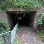 トンネルを抜けていきます。
