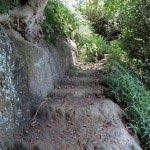 鐙摺城址、山頂への道。葉山のこのあたりは珍しい地層だといいます。