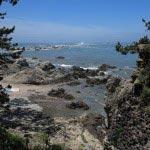 飛柏槙(ビビャクシン)の石碑がある場所から名島方面をみます。このあたりを御殿原といいます。