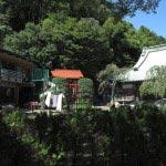 法勝寺境内には幼稚園があります。