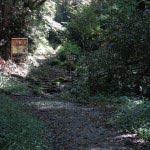 山道に入ってから10分とかからずに、道が3つにわかれる場所につきます。