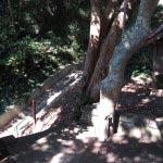 三浦十二天(十二所神社)境内右手の階段を下ると帯解子安地蔵、上ると住宅地です。