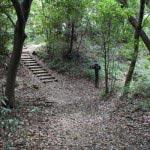 葛原岡・大仏ハイキングコース、北鎌倉〜源氏山公園間の道。そろそろ源氏山公園です。