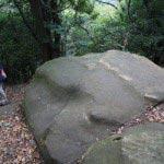 葛原岡・大仏ハイキングコース、北鎌倉〜源氏山公園間の大きな石。