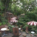 最高のロケーション。樹(いつき)ガーデン。ビールもある喫茶店です。