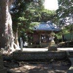 五霊神社境内。多くの大木と小じんまりとした社があります。