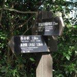 高徳院(大仏)まではもう1kmです。源氏山公園から1.1km進んできました。