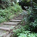 葛原岡・大仏ハイキングコース、北鎌倉口。浄智寺脇の道をしばらく進みます。