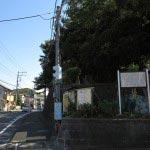 五霊神社境内にあるいくつもの大木は遠目からでも一見してわかります。