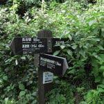 長谷駅まで900m、高徳院(大仏)まで400m、大仏切通しまで150m、源氏山公園から1.8km歩いてきました。