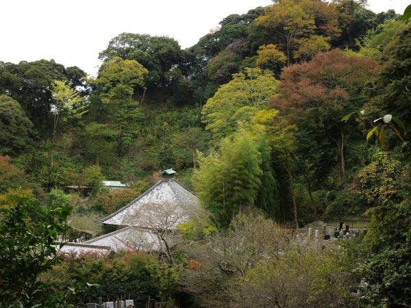 秋の光則寺