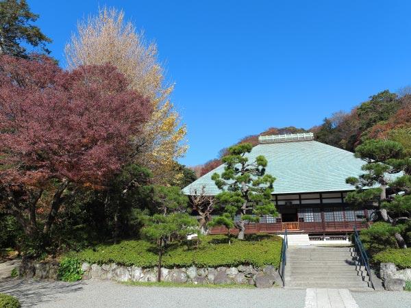 第五位 浄妙寺