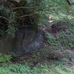 白山神社本殿奥は岩盤が結構長く露出しています。