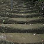 今泉不動へと至る階段は年月と参拝者の行き来によってなだらかに削られています。鎌倉石でしょうか。