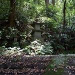 白山神社本堂奥の石塔。