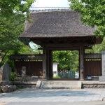 龍寳寺山門。江戸元禄のものだそうです。見事な茅葺きの山門です。
