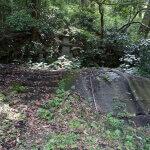 白山神社本堂脇の石段を登り、奥に進むと石塔と岩盤がみえてきます。鎌倉らしい迫力を感じます。