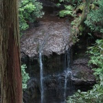 今泉不動へと至る階段からは陰陽瀧がみえます。