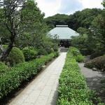 浄妙寺のあじさい。