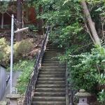 鳥居を抜け、階段を登り熊野神社(大船)の本殿へと向かいます。
