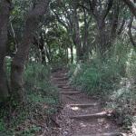 平成巡礼道。そろそろ山道が終わります。