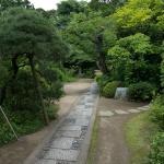 常楽寺境内、山門から本堂へと至る参道。